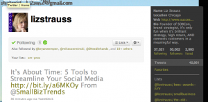 Twitter home page for Liz Strauss